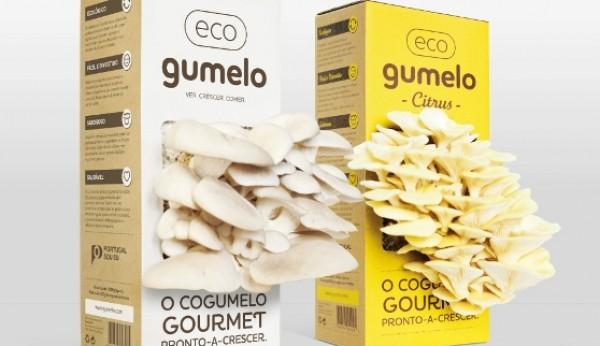 Gumelo | Uma marca a crescer como cogumelos