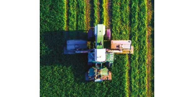 Especial: Agricultura / Agro-alimentar