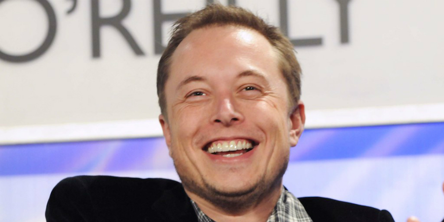 Justiça alemã autoriza Tesla a abater floresta para construir fábrica