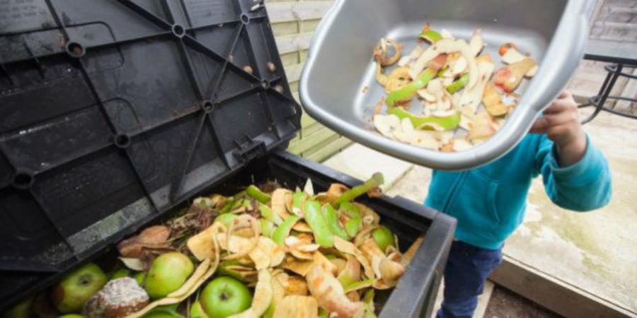 Cerca de 14% da comida produzida no mundo vai para o lixo