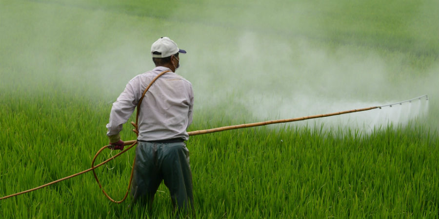 Empresas lucram muitos milhões com pesticidas «altamente perigosos»